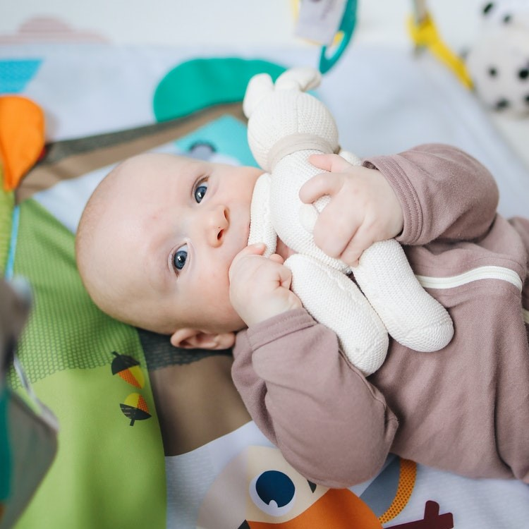 Developing Fine Motor Skills in Infants